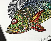 Limited Edition Peacock Bass Zentangle Gicleé Print 8.5x11 Conservation Matted to 11x14