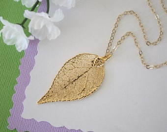 Real Evergreen Leaf, Real Gold Leaf, Evergreen Leaf Necklace, Evergreen Leaf, Gold Filled, Layered, Long NecklaceLC124