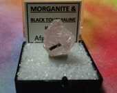Sale Pink MORGANITE With Black TOURMALINE Extremely Rare Beryl Crystal In Perky Mineral Specimen Box From Afghanistan