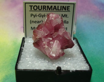Sale TOURMALINE Bicolor Pink Rubellite Terminated Crystal Cluster In Perky Mineral Specimen Box Rare Old Stock