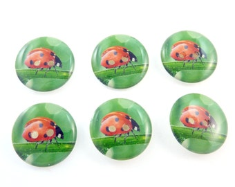 """6 Ladybug or Ladybird Sewing buttons.  Handmade Buttons.  3/4"""" or 20 mm.  Handmade by Me.  Washer and Dryer Safe."""