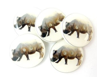 "Hippo or Hippopotamus Buttons.  5 Handmade Buttons made with my original photograph.  3/4"" or 20 mm."