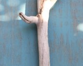 Southwestern Inspired Cactus Driftwood Sculpture Jewelry Holder / Display , Home Decor