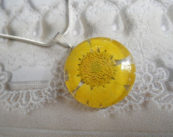 Sunshine Yellow Daisy Pressed Flower Round Glass Pendant-Symbolizes Loyal Love-April's Birth Flower-Nature's Wearable Art-Gifts For 25