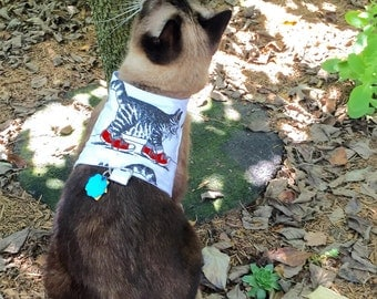 CUSTOMIZED KLIBAN CAT (or Dog) Harness Vest