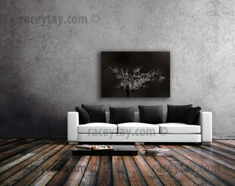 Nature Photography on Canvas Large Wall Art Canvas Print Brown Rustic Neutral Decor