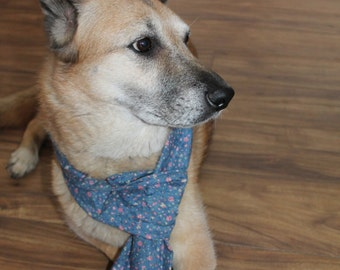 Blue floral scarf for medium to large size dogs.