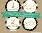 20 Baby MONTHLY stickers - MILESTONE stickers - Baby Month Stickers - Onesie sticker - Photo prop - Shower gift - Baby Girl