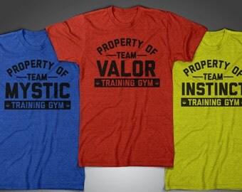 Training Gym - Team Valor Team Mystic Team Instinct vintage style athletic dept. pokemon go inspired tshirt