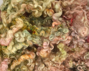 Wensleydale Long Wool Locks for Spinning and Felting Fiber- Colorway Tucson Agave