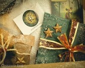Decorated GIFT Special Item, packaging, wrapp on, winter, christmas, snow, steampunk, fantasy