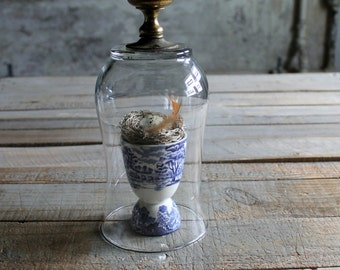 Glass Cloche with Metal Door Knob - Letter A