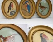 Hand Embroidered British Birds in Gilt Frames Set of Three Vintage 1960s