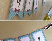 Mustache Bash Baby Shower Banner