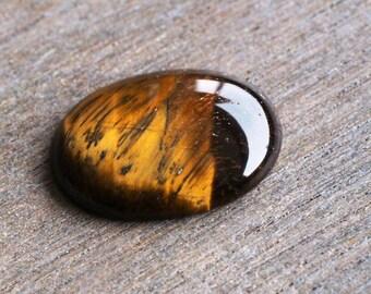 Tiger Eye Oval Cabochon 30 x 22 mm