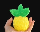 Washcloth Pineapple, WashAgami ™, Intructional Video
