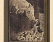 Life Lessons - Antique 1900s Embossed and Gilded Horses and Hounds Postcard