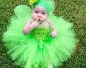 Fairy Princess Tutu Dress , Fairy Princess Party Dress, Fairy Wings