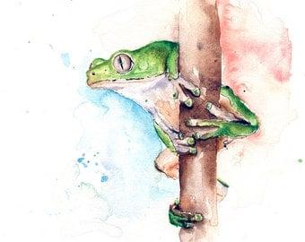 FROG WATERCOLOR PAINTING - frog lover, frog gift, frog painting, frog art, green frog, frog illustration, monkey leaf frog