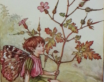 Summer Flower Fairies Mounted Herb Robert Flower Fairy  CICELY MARY BARKER Nostalgic Vintage Original Print Ready to Frame.