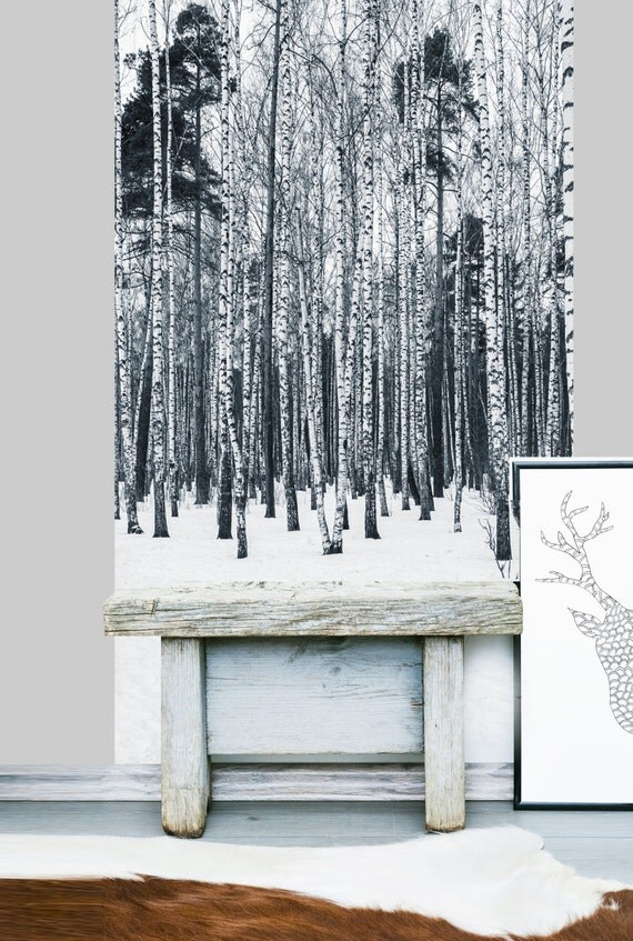 Birch tree forest wall mural removable vinyl by limewalldecor - Birch tree wallpaper peel and stick ...