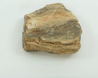 "Petrified Wood, 44g, Texas, Fossilized Wood, 1.75 X 1.5  x .75""  (45 x 37 x 20mm)"