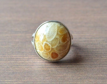 Domed Agatized Fossil Coral Ring
