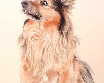Custom pet portrat.Dog painting.Dog portrait.Pet portrat.Dog lover