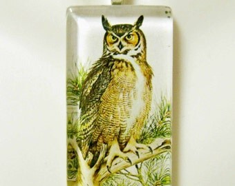 Great horned owl pendant and chain - BGP02-022