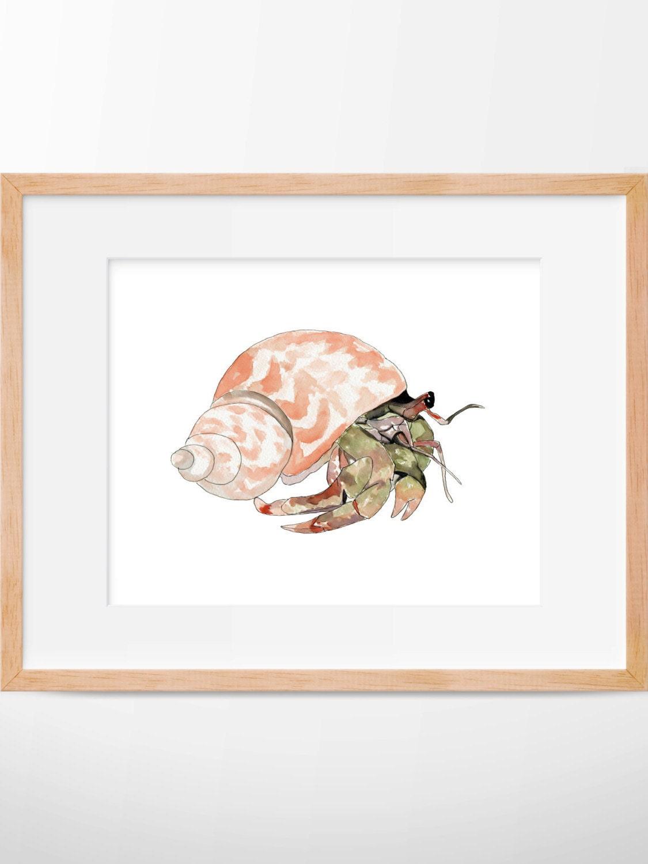 Hermit Crab 104 Print, Crab Watercolor, Crab Art, Beach ... Hermit Crab Art