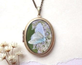 Faerie Moth Locket - Ethereal Iridescent Insect Photo Brass Locket Necklace - Woodland Butterfly