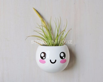 Cute kawaii Magnetic Ceramic Air Plant Planter - Gift- Desk Decor// Home Decor//Gift//Kitchen Decor