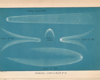 1897 Comets (including Halley's Comet) Antique Astronomy Print