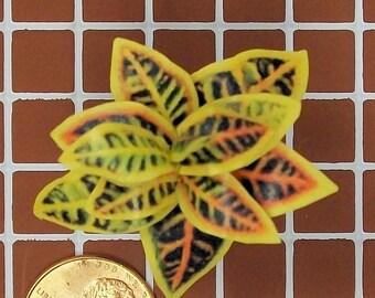 dollhouse miniature croton potted plant