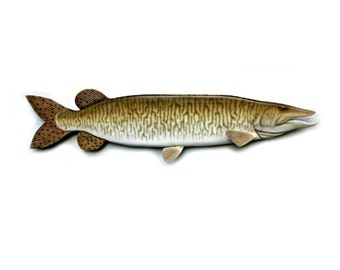 48 in.MUSKY, Muskie wood carving, fish art, sculpture, wood art, wood fish, fishing decor, wall hanging, fishermans gift, lodge/cabin decor