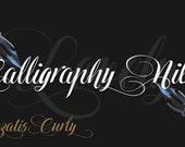 Kalligraphie-Schrift | Curly Hinzatis digitale Schrift | SOFORTIGER digitaler DOWNLOAD | Schriftart-Datei | Offener Typ Schrift (.otf)