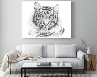 Tiger Print, Illustration, Graphite Pencil Realistic Drawing Of Animal Asia