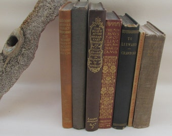 Set of Vintage Nature Tones Coloured Decorative Books - Instant Library - Old Book Collection