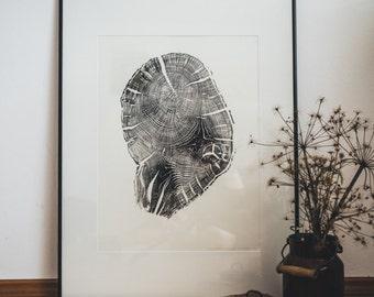 Woodprint Eiche #1 / Oak #1
