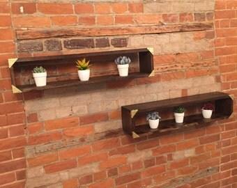 Tronc Shelves (a pair)