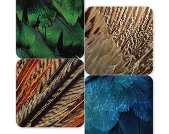 Exotic Bird Feathers Coasters (Set of 4)