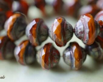Rustic Sierra, Saucer Beads, Czech Beads, N1732
