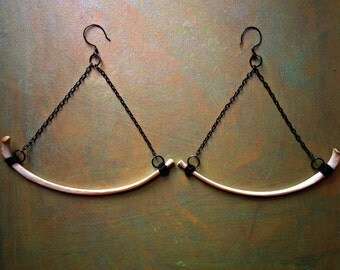 Canis - Coyote Rib Specimen Trapeze Earrings