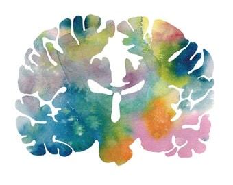 "Human Brain Watercolor Print - 12"" x 12"" Brain Art - Neurology, Neuroscience, and Psychology Prints - Thoughtful Gifts by J. Sayuri"