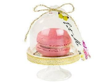 Alice Curious Cake Domes