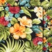Tropical Garden Fabric - Hawaiian Cotton Fabric, Black, Hibiscus, Bird of Paradise, Lehua, Monstera, Ferns, Black, HC9804