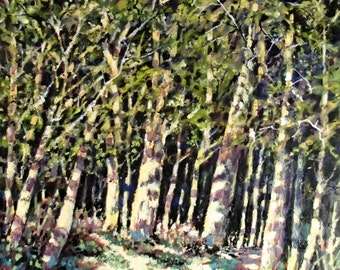 Original Acrylic Painting of sun-dappled Woodland by Barry Baxter