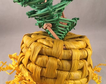 Pineapple Pickout Maize Forager - Bird Toy