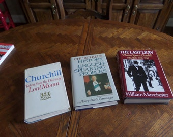 GREAT DEAL 3 MORE Winston Churchill Books
