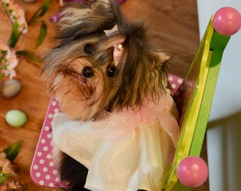 Fancy Dog Dress